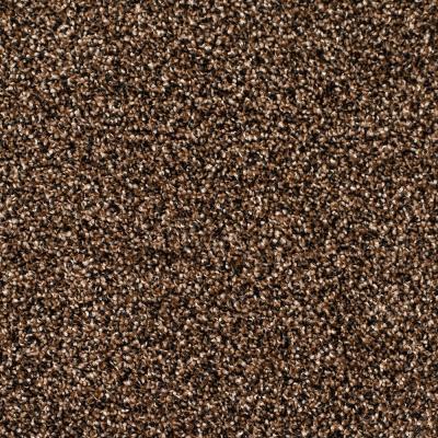 Legacy Twist Carpet, Color: Bee Hive
