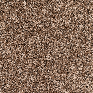 Legacy Twist Carpet, Color: Black Tan