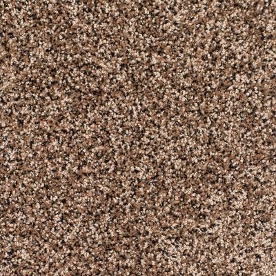 Legacy Twist Carpet, Color: Black Tan