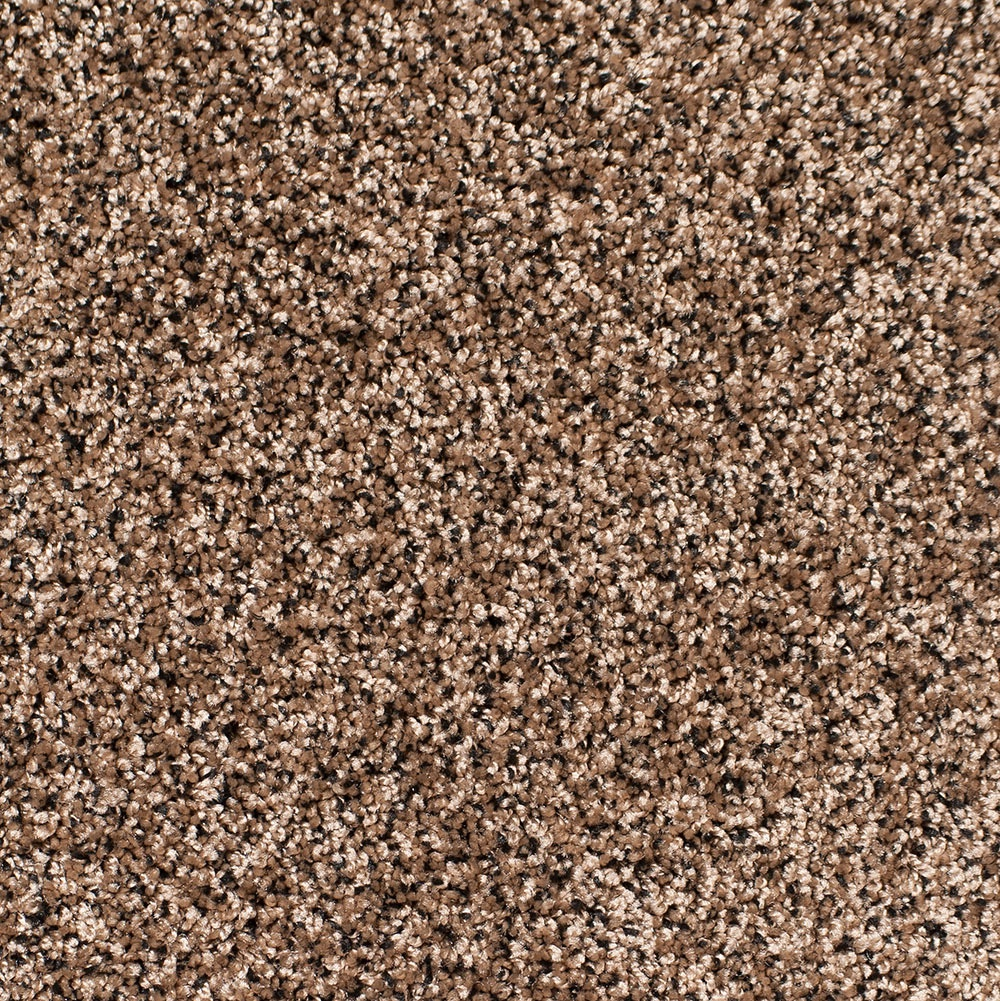 Image Gallery Tan Carpet