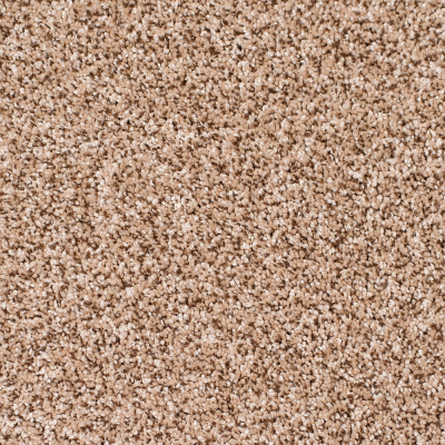 Legacy Twist Carpet, Color: Mocha Swirl