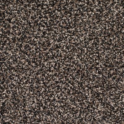 Legacy Twist Carpet, Color: Peppercorn