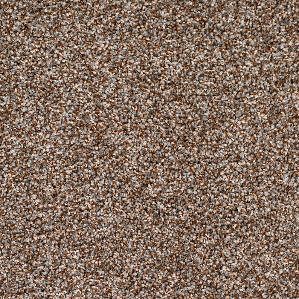 Taupe Carpet Color Vidalondon