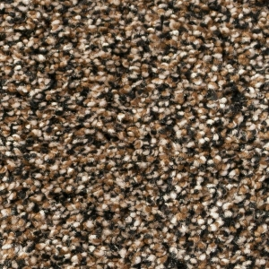 Infinity / Royalty Carpet - Beehive