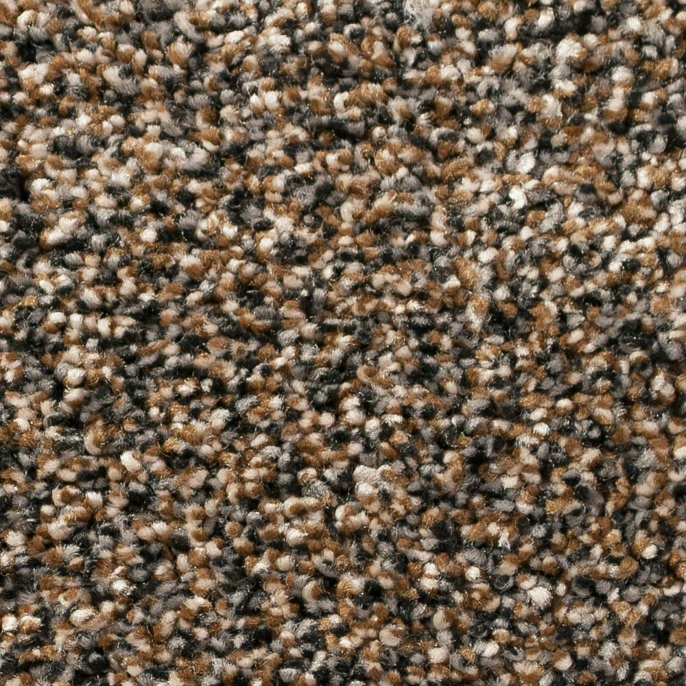 Infinity / Royalty Carpet - Dark Roast