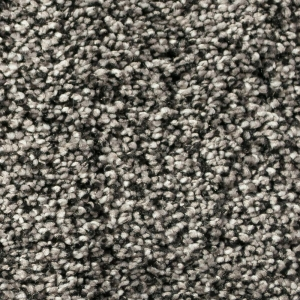 Infinity / Royalty Carpet - Iron Clad