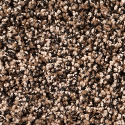 Luxor / Athena Carpet - Black Tan