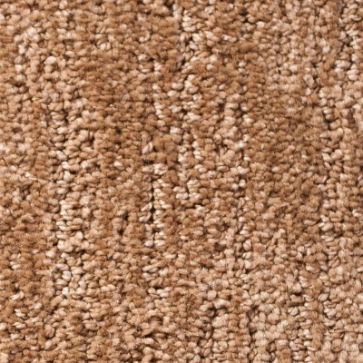 Timeless Moments Carpet - Brownie