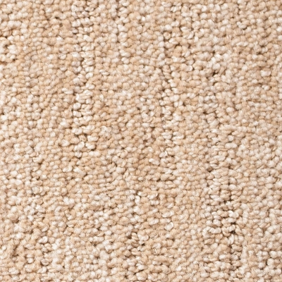 Timeless Moments Carpet - Coastal Dunes