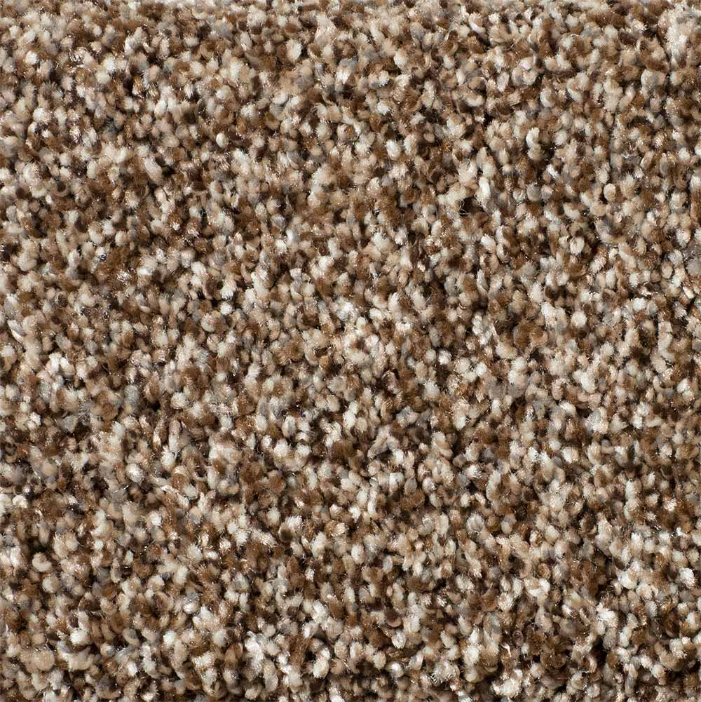 Stryker carpet - Coco Bean