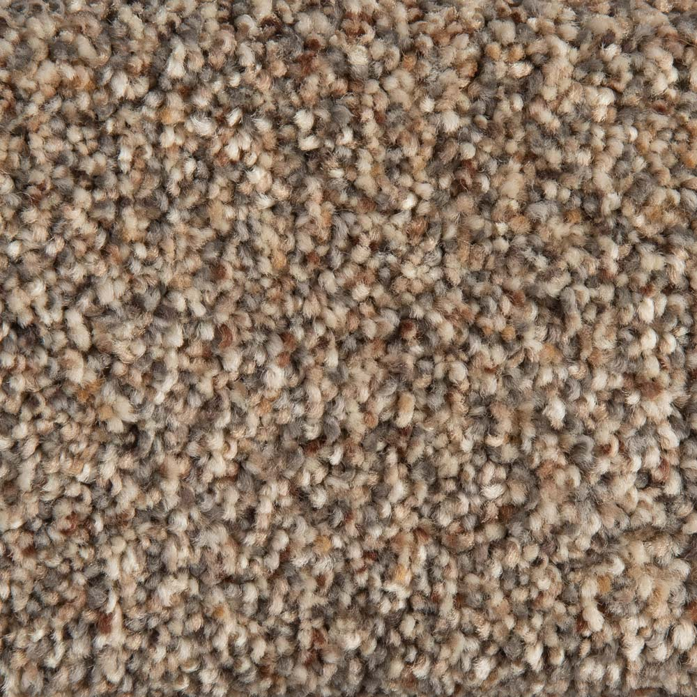 Bishops Court - Checkmate Carpet - Bright Earth