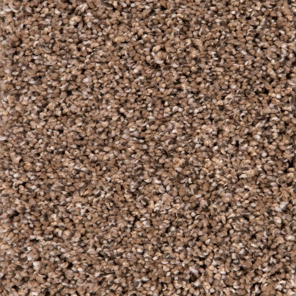 Grand Slam Carpet, color: Barn Wood