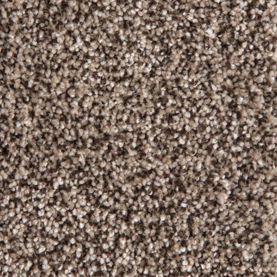 Camelot Carpet - Honey Spice