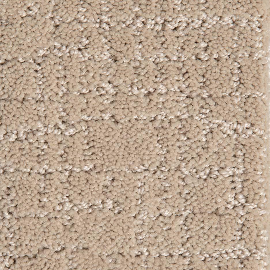 Dynasty Carpet - Buff