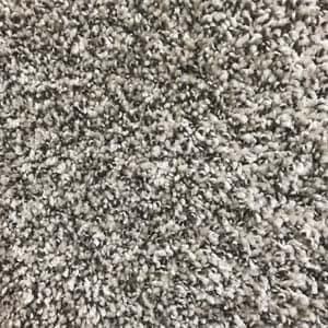 Calypso carpet photo